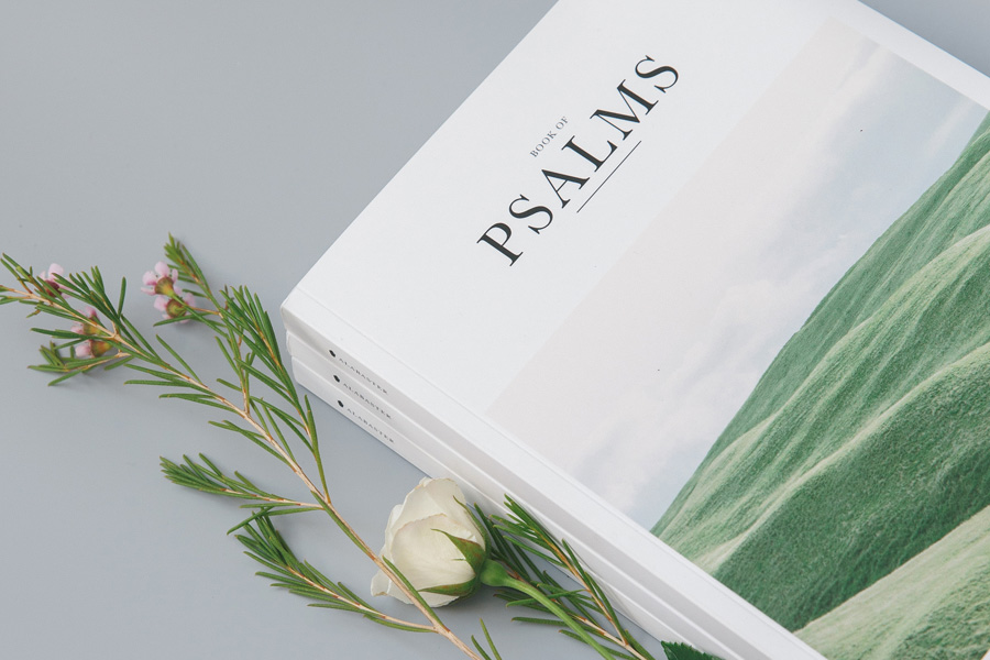 Protection for Christians by Park Praise Publications